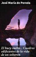 eBook: El buey suelto... Cuadros edificantes de la vida de un solterón