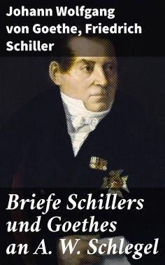 ebook: Briefe Schillers und Goethes an A. W. Schlegel