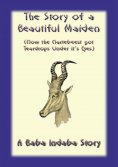 eBook: The Story of a Beautiful Maiden
