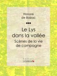 eBook: Le Lys dans la vallée