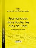 eBook: Promenades dans toutes les rues de Paris