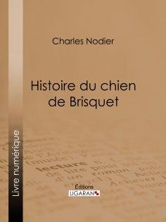 eBook: Histoire du chien de Brisquet