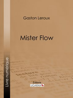 eBook: Mister Flow