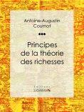ebook: Principes de la théorie des richesses