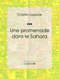 eBook: Une promenade dans le Sahara