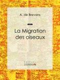 ebook: La migration des oiseaux