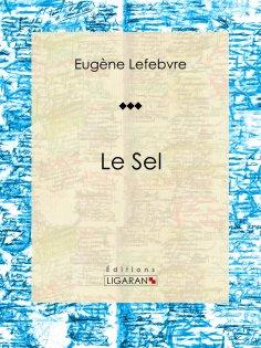 ebook: Le sel
