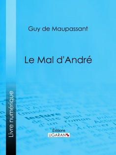 eBook: Le mal d'André