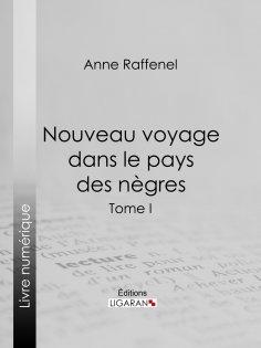 eBook: Nouveau voyage dans le pays des nègres
