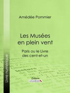 ebook: Les Musées en plein vent