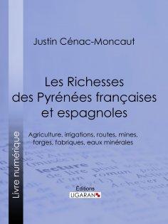 eBook: Les Richesses des Pyrénées françaises et espagnoles