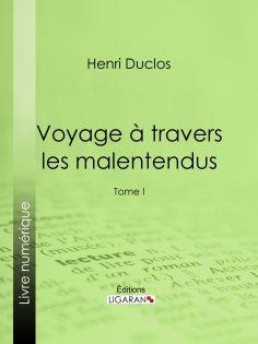 eBook: Voyage à travers les malentendus