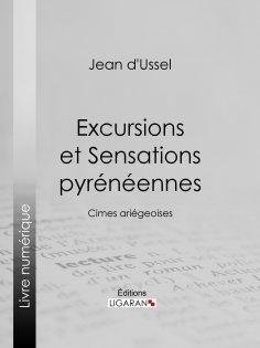eBook: Excursions et Sensations pyrénéennes