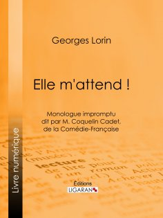 eBook: Elle m'attend !