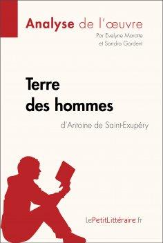eBook: Terre des hommes d'Antoine de Saint-Exupéry (Analyse de l'oeuvre)