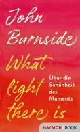 eBook: What light there is