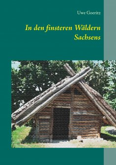 ebook: In den finsteren Wäldern Sachsens