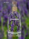 eBook: Lavendelblut