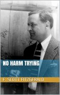 eBook: No Harm Trying
