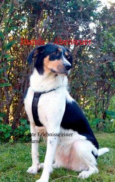 ebook: Hunde - Abenteuer