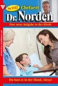 eBook: Chefarzt Dr. Norden 1112 – Arztroman