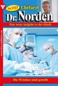 eBook: Chefarzt Dr. Norden 1113 – Arztroman