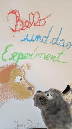 ebook: Bello und das Experiment