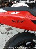 ebook: Red Angel