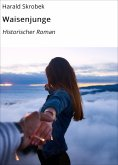 ebook: Waisenjunge