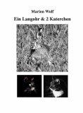 eBook: Ein Langohr & 2 Katerchen