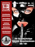 eBook: BDSM Geschichten - SM Stories - Erotikroman