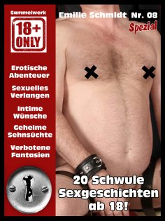eBook: Gay Sexgeschichten ab 18
