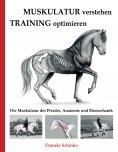 eBook: Muskulatur verstehen - Training optimieren