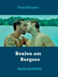 ebook: Beulen am Bergsee