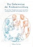 eBook: Die Geheimnisse der Kindesentwicklung