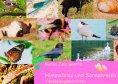 eBook: Himmelblau und Sonnenreich