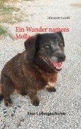 eBook: Ein Wunder namens Molla