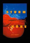 eBook: Sturmhöhe
