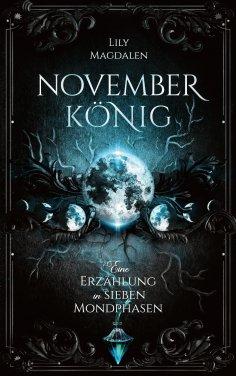 eBook: Novemberkönig