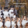 eBook: Shetland Sheepdog