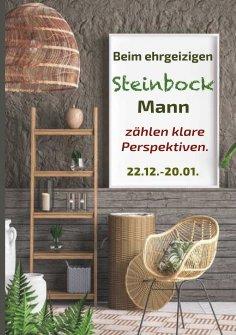 eBook: Beim ehrgeizigen Steinbock Mann zählen klare Perspektiven