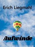 eBook: Aufwinde