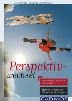 ebook: Perspektivwechsel