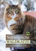 eBook: Norwegische Waldkatze