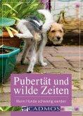 eBook: Pubertät und wilde Zeiten