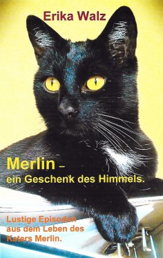 eBook: Merlin - ein Geschenk des Himmels.