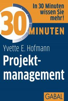 ebook: 30 Minuten Projektmanagement
