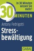 eBook: 30 Minuten Stressbewältigung