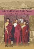eBook: Unter Buddhas und Allahs Augen. Abenteuerliche Pfade bis ins Himalaya