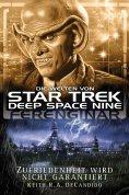 ebook: Star Trek - Die Welten von Deep Space Nine 05: Ferenginar - Zufriedenheit wird nicht garantiert